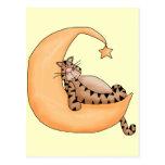 Gato de la luna y de la estrella postal