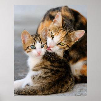 Gato de la madre que lame su gatito joven blando poster