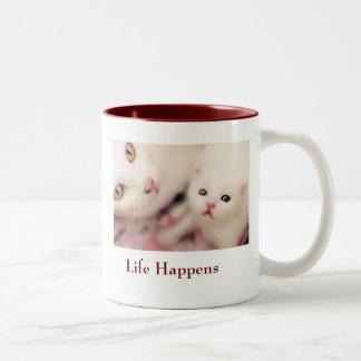 Gato de la madre y taza del bebé