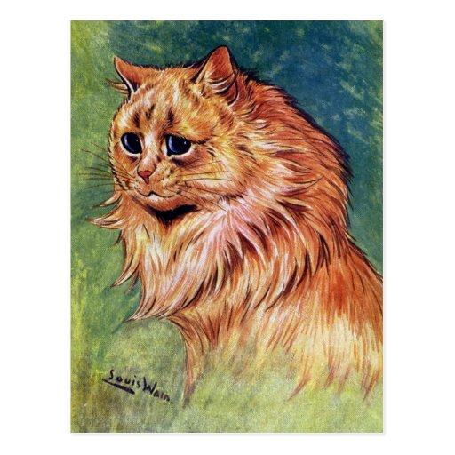 Gato de la mermelada con los ojos azules tarjetas postales