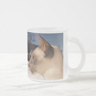 Gato de la nieve - perfil siamés del punto azul taza