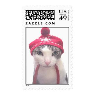 gato de la nieve sello