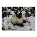 Gato de la nieve tarjeta
