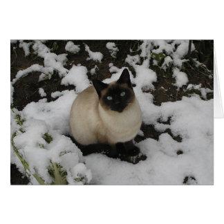Gato de la nieve tarjeta de felicitación