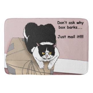 Gato de la oficina de correos