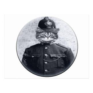 Gato de la policía