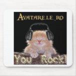 Gato de la roca tapetes de ratones