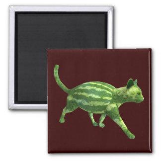 Gato de la sandía imán cuadrado