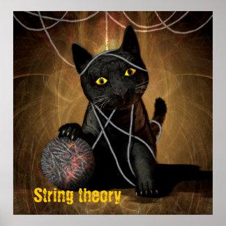 Gato de la teoría de la secuencia póster
