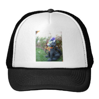 Gato de la vuelta gorra