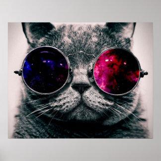 gato de las gafas de sol póster