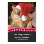 Gato de Lol de la tarjeta de felicitación del día Invitación 12,7 X 17,8 Cm