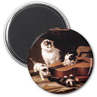 Gato de los gatitos que juega con lindo travieso d imán de nevera