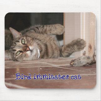 Gato de los immitates del pájaro mouse pads