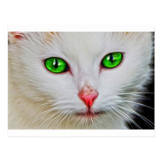 Gato de los ojos verdes postal