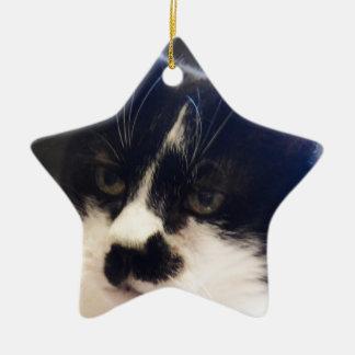Gato de Monty Adorno Navideño De Cerámica En Forma De Estrella
