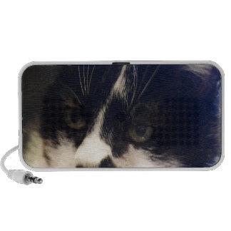 Gato de Monty iPod Altavoz