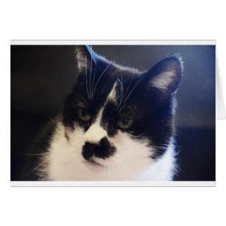 Gato de Monty Tarjeta De Felicitación