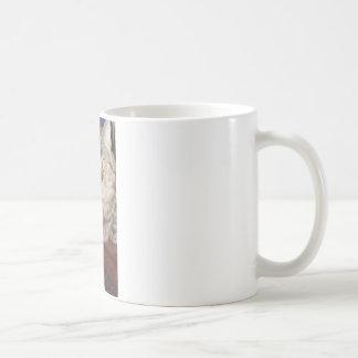 Gato de Napoleon Tazas De Café
