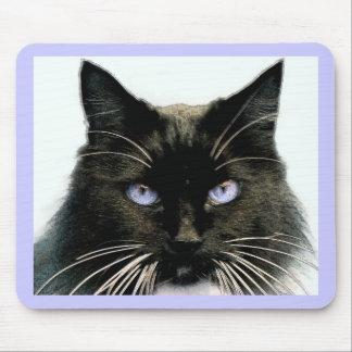 Gato de ojos azules mousepad
