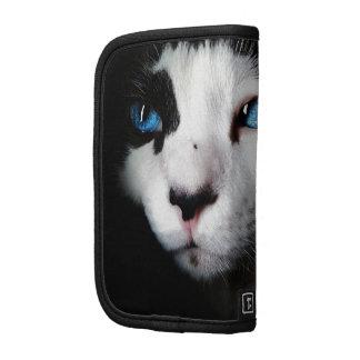 Gato de ojos azules planificador
