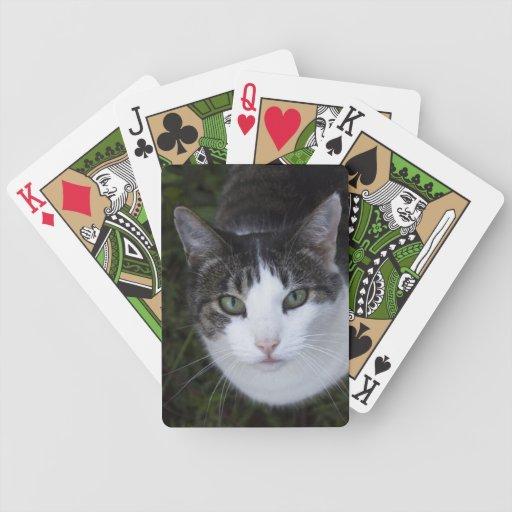 Gato de ojos verdes baraja cartas de poker