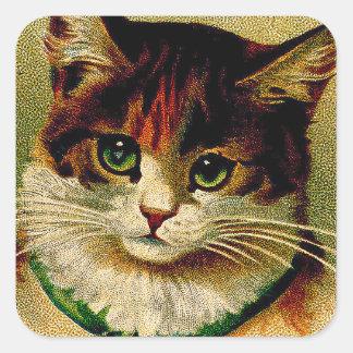 Gato de ojos verdes del vintage con los cascabeles pegatina cuadrada