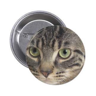 Gato de ojos verdes pin redondo de 2 pulgadas