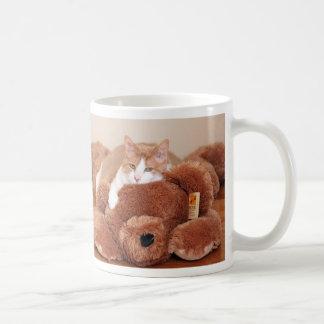 Gato de oso de peluche tazas