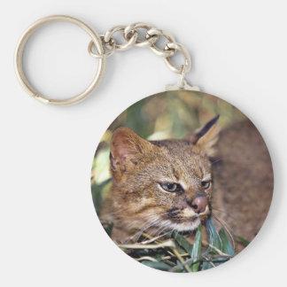 Gato de Pampa colocolo del Felis Llavero Personalizado