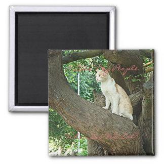 Gato de Parque Kennedy Imán Cuadrado