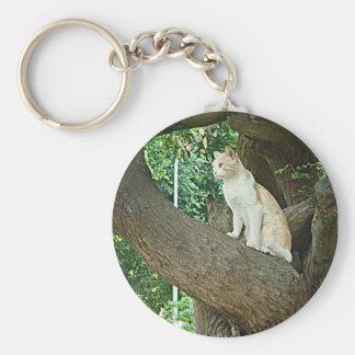 Gato de Parque Kennedy Llavero Redondo Tipo Pin