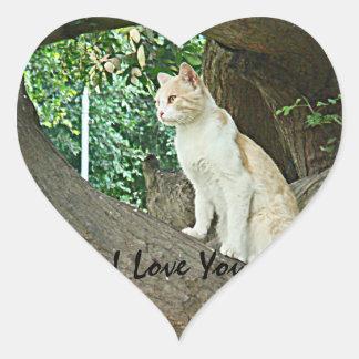Gato de Parque Kennedy Pegatina En Forma De Corazón