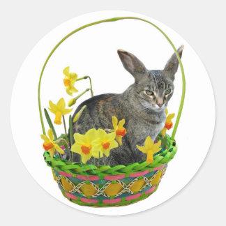 Gato de Pascua en pegatina de los narcisos