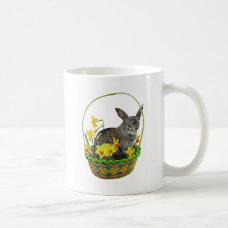Gato de Pascua en taza de los narcisos