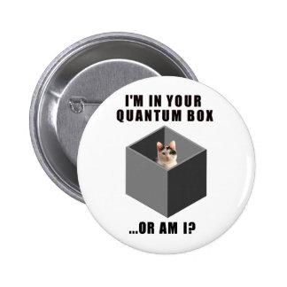 Gato de Quantum Pin