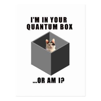 Gato de Quantum Tarjeta Postal