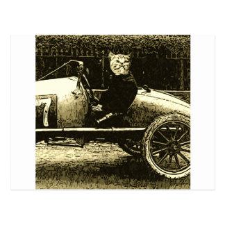 Gato de Racecar Postal