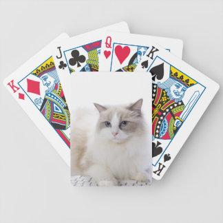 Gato de Ragdoll en el teclado de ordenador Baraja Cartas De Poker