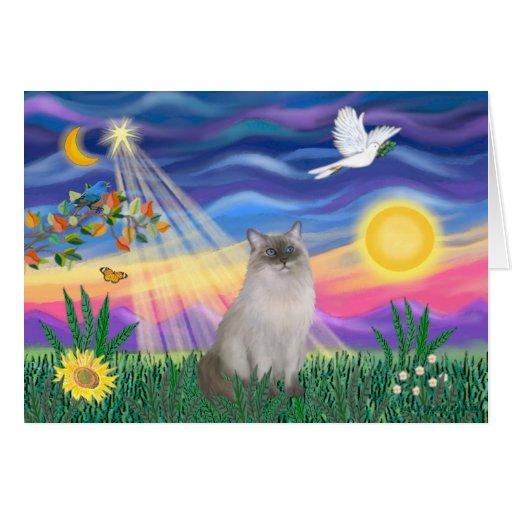 Gato de Ragdoll (punto azul) - crepúsculo Tarjeta De Felicitación