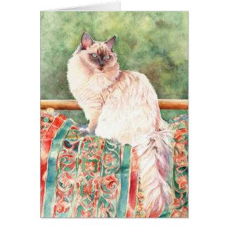 """Gato de """"Ragdoll"""" Tarjeta De Felicitación"""