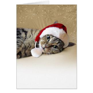 Gato de reclinación del día de fiesta tarjeta