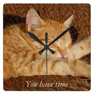 Gato de relajación reloj cuadrado