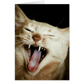 Gato de risa tarjeta de felicitación