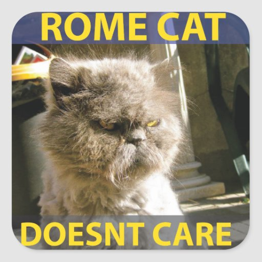 Gato de Roma - pegatina cuadrado