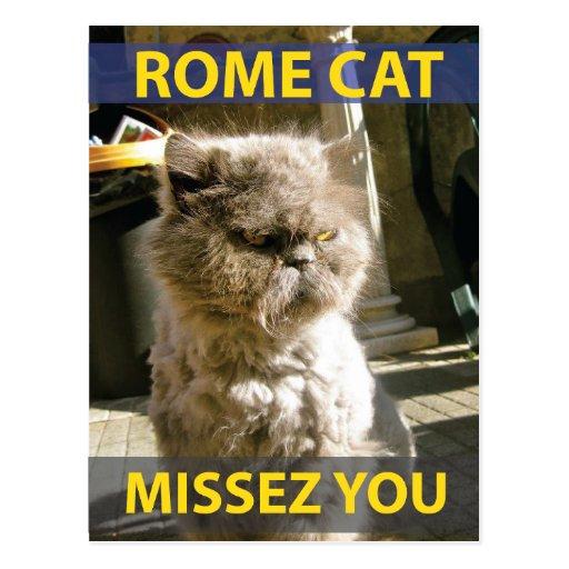 Gato de Roma - postal