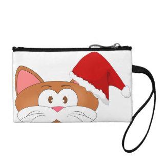 Gato de Santa