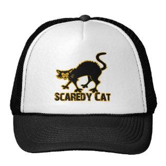 Gato de Scaredy Gorra