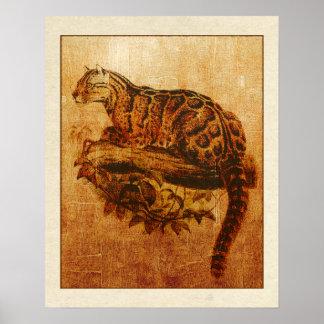 Gato de selva extinto del leopardo de Formosa Posters