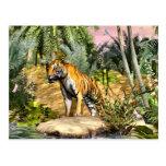 Gato de selva postal